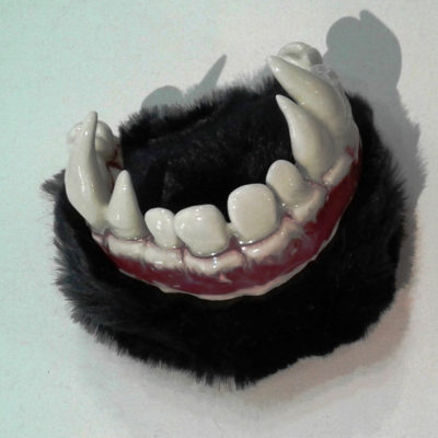 animal teeth